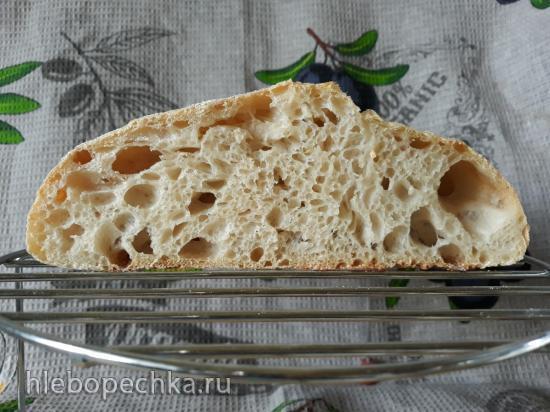 Итальянская закваска (Levito madre) - выращивание и уход