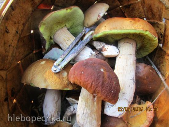 По грибы с лукошком