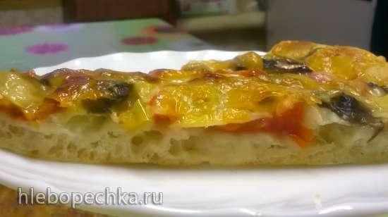Тесто для пиццы (медленное)