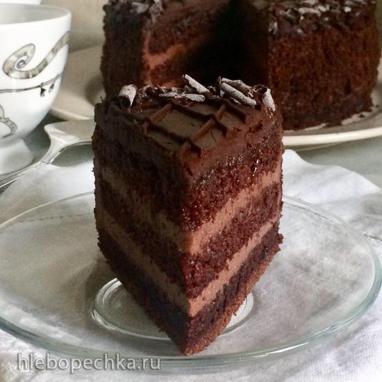 Шоколадный бисквит (Ману Фидель)