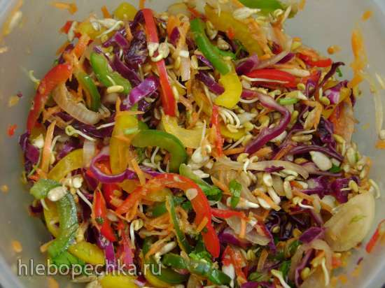 Салат «Витаминный» с проростками семян пажитника и подсолнечника