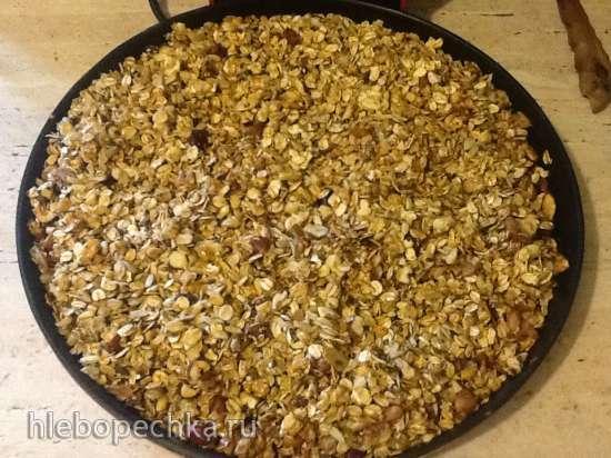 Домашняя гранола - идеальный завтрак (пиццамейкеры Princess 115000)
