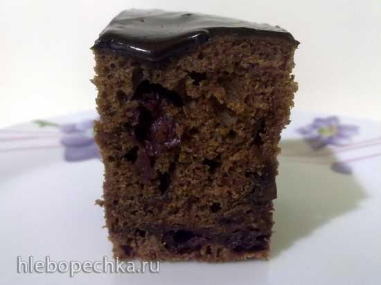 Шоколадный пирог с вишней (Panasonic SR-TMH 18)