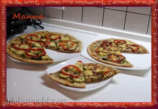 Овощная пицца в гриле BBK и пиццепечке Princess