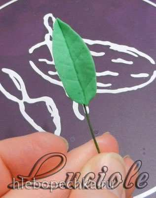 Мастичная  оранжерея