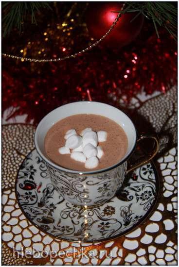 Горячий шоколад с красным вином (блендер-суповарка Vitek VT-2620)