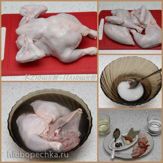 Курица в рукаве с пряностями и беконом (аэрогриль Brand 35128)