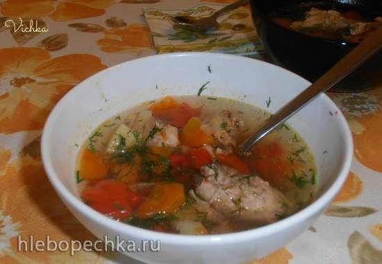 Суп куриный с овощами (мульти-скороварка  Brand 6051)