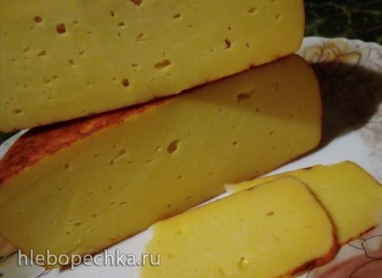 Применение ветчинницы для приготовления сыра