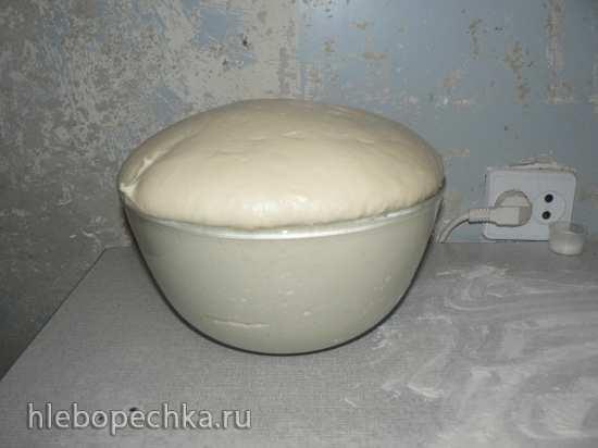 Пирожки, плюшки, ватрушки из теста на закваске (без промышленных дрожжей)