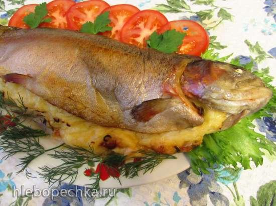 Радужная форель, запеченная с сыром и луком