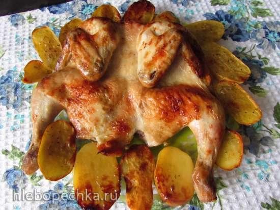 Запечённая курица (в маринаде из капустного рассола)
