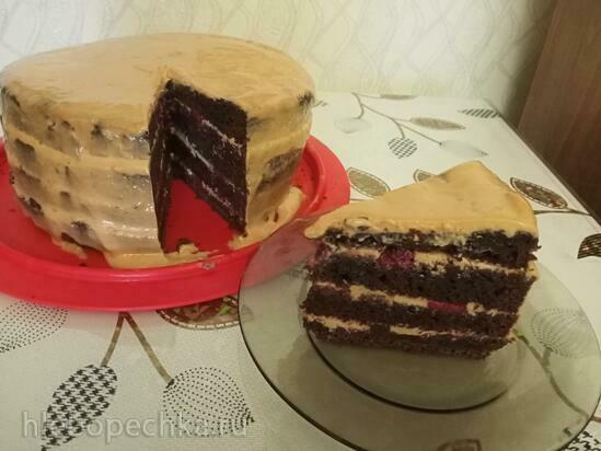 Бисквит шоколадный «Перфект»