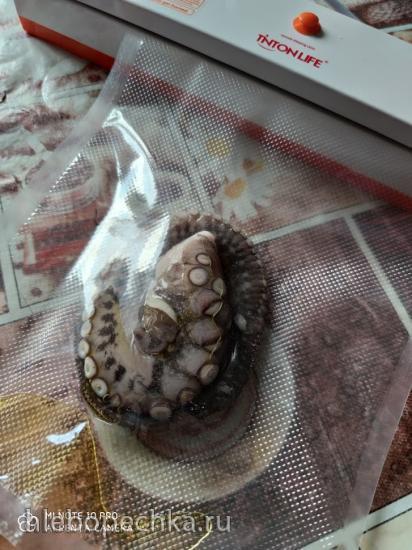 Щупальца осьминога по технологии Sous Vide