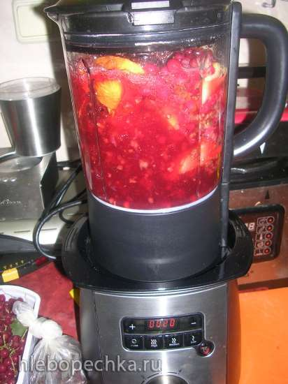 Напиток из красной смородины и яблок со специями (мультиблендер Profi Cook PC-МСМ1024)