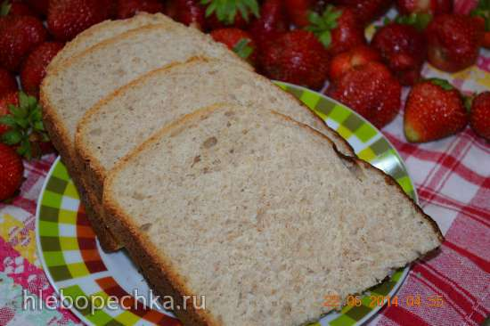 Хлеб для завтрака на изюмной закваске (Steba DD1)