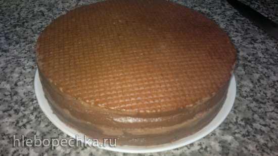 Торт «Черный лес» или Selva Negro