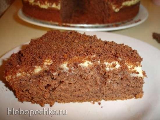 Торт шоколадный низкой жирности - Sjokopulver Kake (Lite Fett)