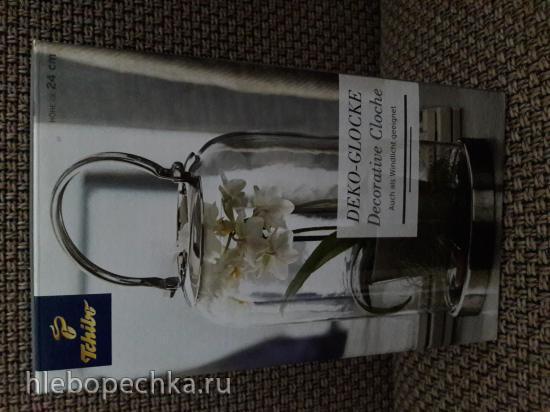 Продаю: Декоративный стеклянный колокол