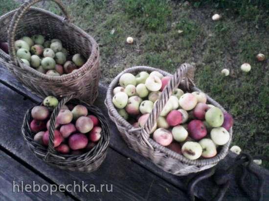 Сладкая заготовка из фруктовых отжимок