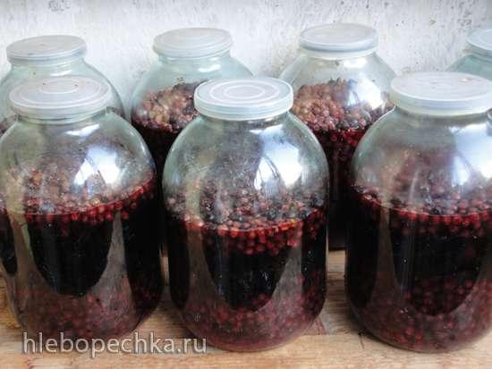 Домашнее вино «Смородиновый купаж»