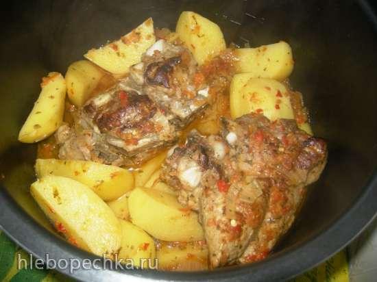 Свиные ребрышки с картофелем в остром соусе в Steba DD1 ECO