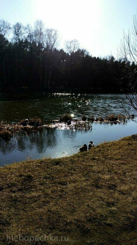 Прогулка в парке Кузьминки