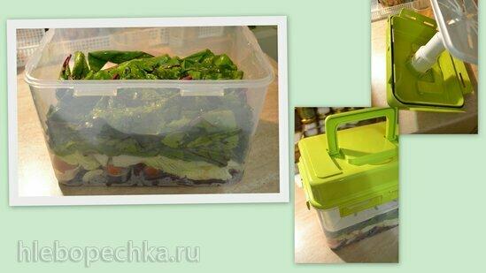Ферментированные (заквашенные) стебли свеклы + зеленая алыча