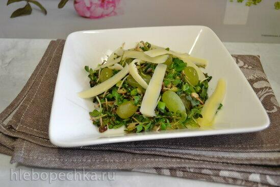Салат из микрозелени редиса, с сыром и кедровыми орешками