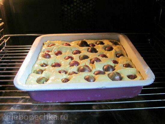 Пирог-кекс с крыжовником
