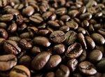 Эффективен ли кофейный жмых как мульча или удобрение?
