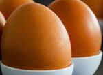 Как пересчитать яичный белок в количество яиц?