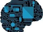 Как наш мозг обрабатывает речь?