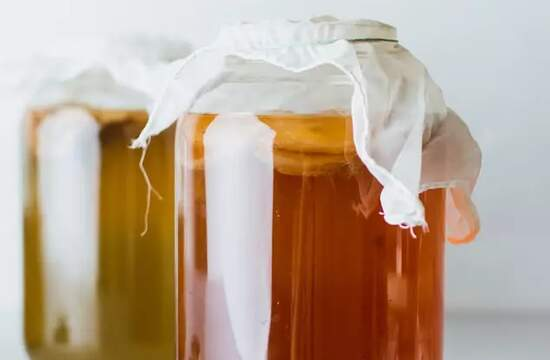 Исследователи начинают разгадывать тайны ферментации чайного гриба