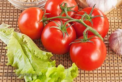Классификация овощей, виды, признаки и полезные свойства
