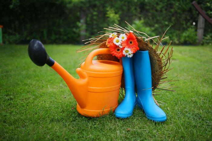 Что делать в саду и огороде в августе