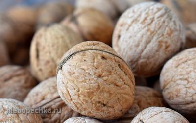 Сорта грецкого ореха в Узбекистане