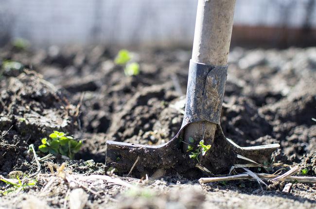 Окультуривание почвы