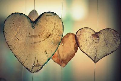 Кратко о строении сердечно-сосудистой системы