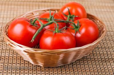 Как получить богатый урожай помидоров, который приведет всех в восторг?