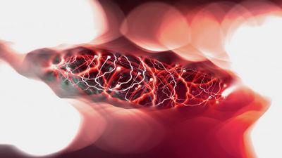 Нейронные импульсы и РНК