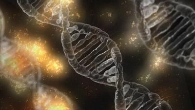 Рождение молекулярной биологии